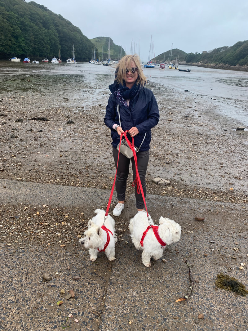 beach in north devon with westies | the new normal september planning